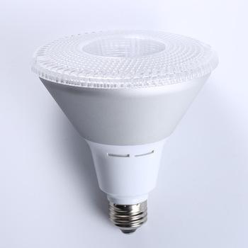 PAR38 Bulbs